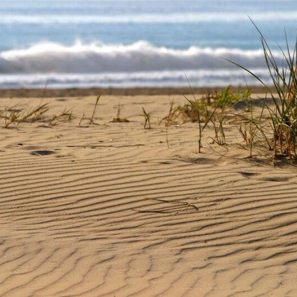 Playa de El Pinet