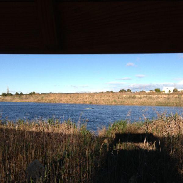 Paraje natural municipal Lagunas de Lo Monte